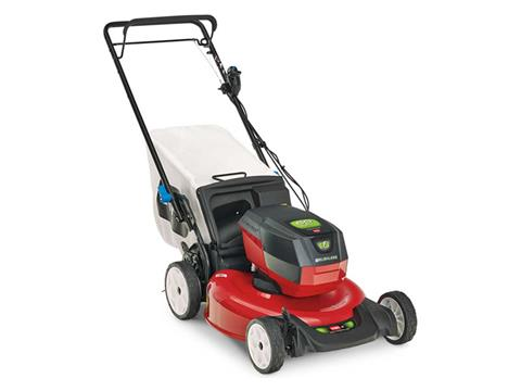 Toro Recycler 21 in. 60V Max Battery Self-Propel in Mio, Michigan