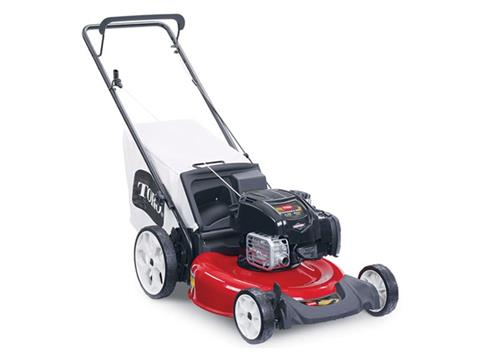 Toro Recycler 21 in. Briggs & Stratton 163 cc Push in Greenville, North Carolina