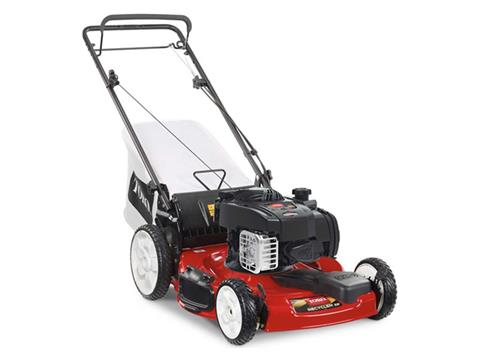 Toro Recycler 22 in. Briggs & Stratton 150 cc High Wheel in Mio, Michigan