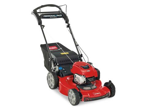 Toro Recycler 22 in. Briggs & Stratton 163 cc Personal Pace Auto-Drive in Mio, Michigan