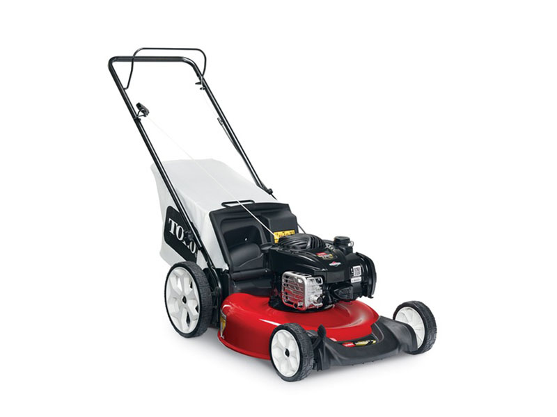 2018 Toro 21 in. (53 cm) Push Mower in Dearborn Heights, Michigan