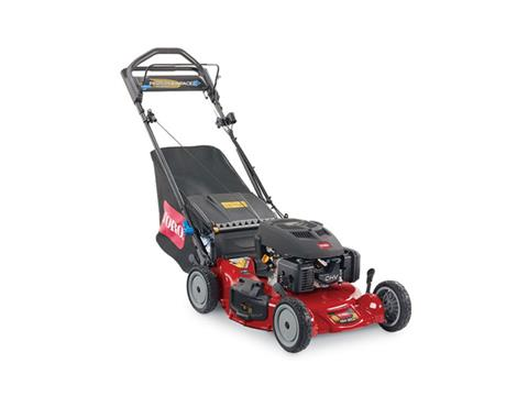 2019 Toro 21 in. Personal Pace Spin-Stop Mower in Mansfield, Pennsylvania
