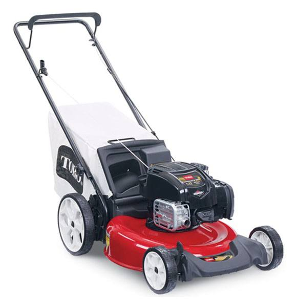 2020 Toro Recycler 21 in. Briggs & Stratton 163 cc in Mansfield, Pennsylvania