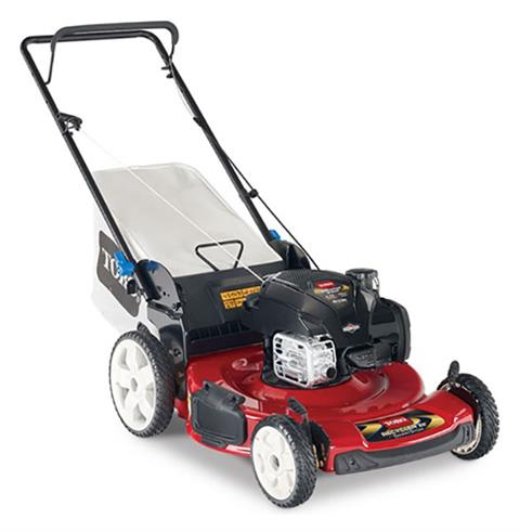 2020 Toro Recycler 22 in. Briggs & Stratton 150 cc SS in Greenville, North Carolina