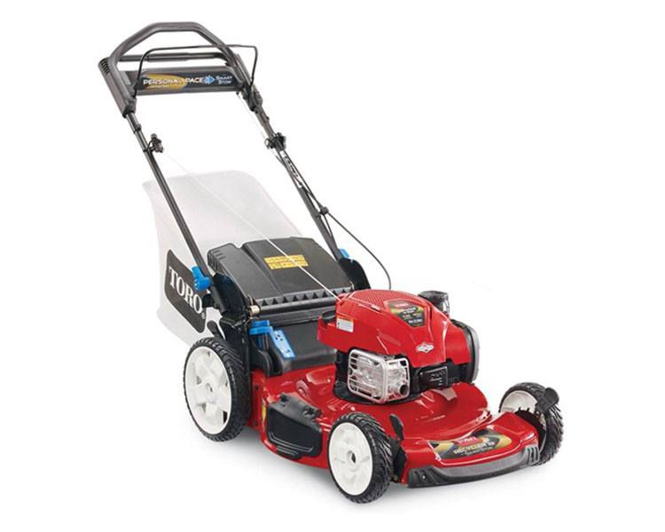 2020 Toro Recycler 22 in. Briggs & Stratton 163 cc SS RWD in Francis Creek, Wisconsin