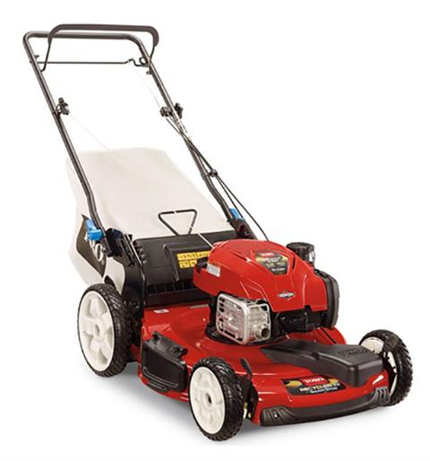 2020 Toro Recycler 22 in. Briggs & Stratton 163 cc SS FWD in Mio, Michigan