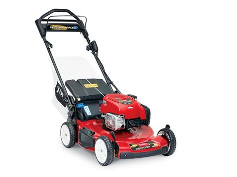 Toro Recycler 22 in. Briggs & Stratton 163 cc ES in Francis Creek, Wisconsin