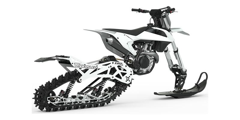 2021 Timbersled ARO 120 SX SC in Elk Grove, California - Photo 3