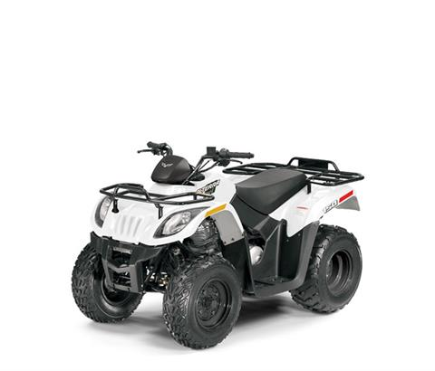2018 Textron Off Road Alterra 150 in Harrisburg, Illinois