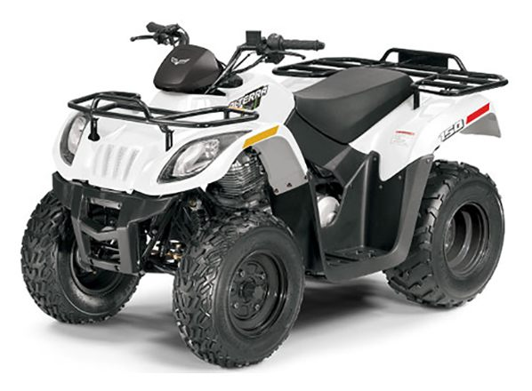 2018 Textron Off Road Alterra 150 in Philipsburg, Montana