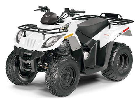 2018 Arctic Cat Alterra 150 in Goshen, New York