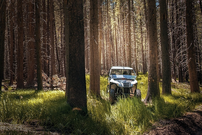 2018 Textron Off Road Wildcat Trail XT in Sandpoint, Idaho - Photo 11