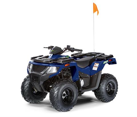 2019 Textron Off Road Alterra 90 in Ortonville, Minnesota