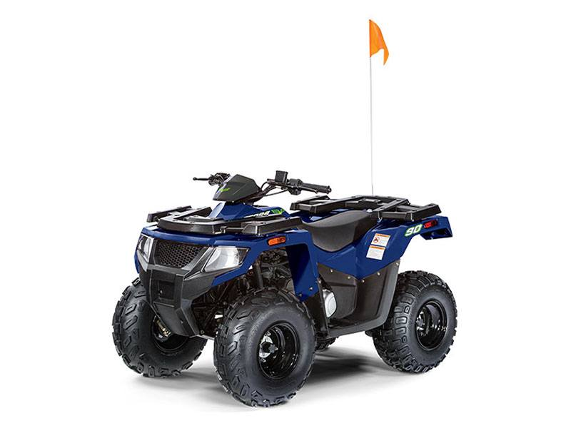 2019 Arctic Cat Alterra 90 in Tully, New York
