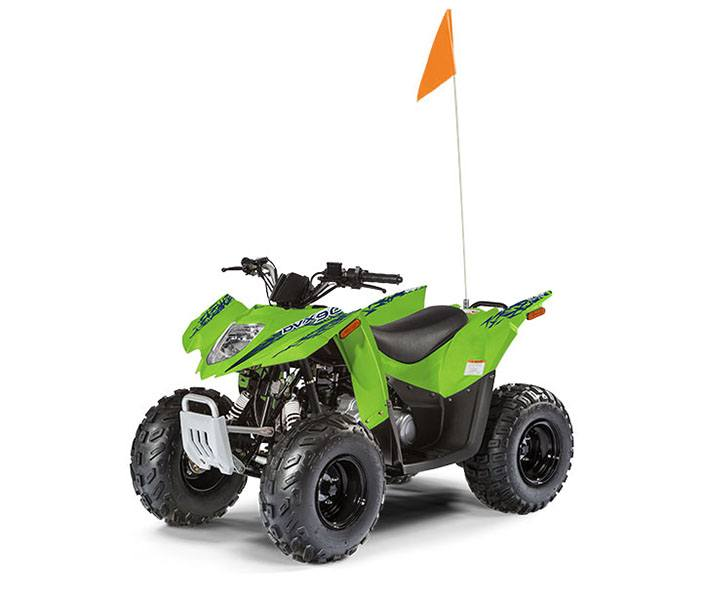 2019 Arctic Cat Alterra DVX 90 in Hancock, Michigan