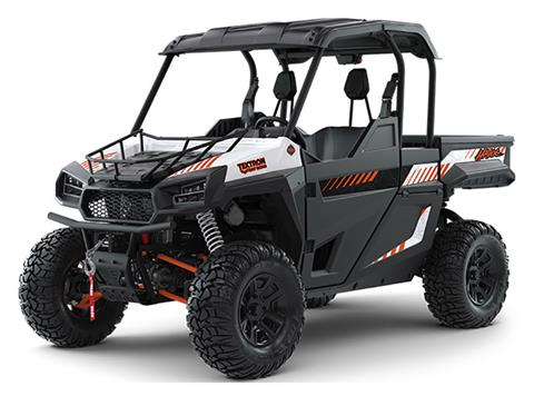 2019 Arctic Cat Havoc Backcountry Edition in Saint Helen, Michigan