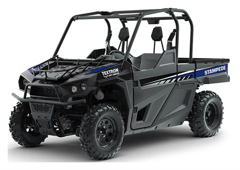 2019 Arctic Cat Stampede in Payson, Arizona