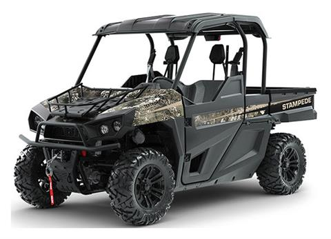 2019 Arctic Cat Stampede Hunter Edition in Saint Helen, Michigan