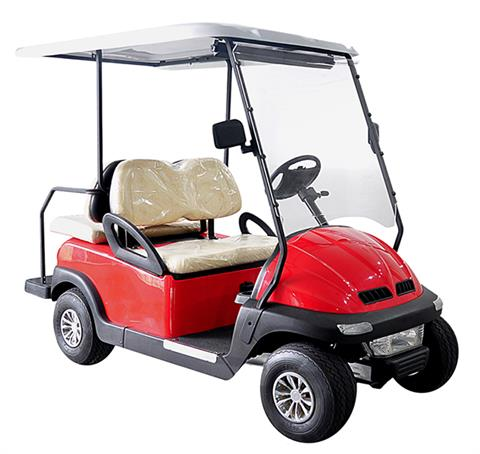 2017 Hisun Pulse Golf Cart (Electric) in Paso Robles, California