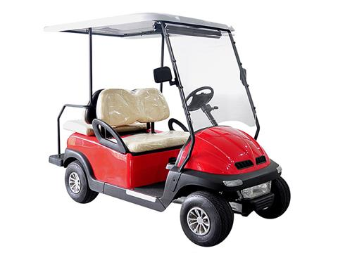 2018 Hisun Pulse Golf Cart (Electric) in Sturgeon Bay, Wisconsin