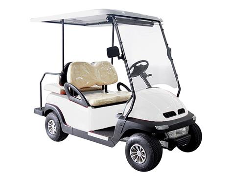 2020 Hisun Pulse Golf Cart in Coloma, Michigan - Photo 1