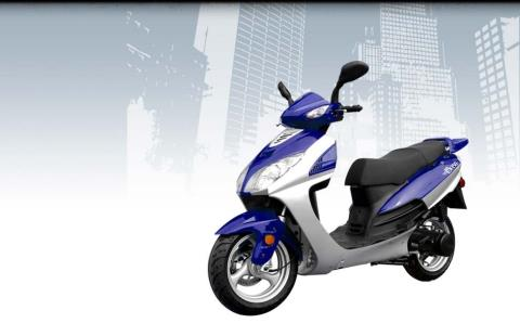 2015 Wolf Brand Scooters Wolf EX-150 in Neptune, New Jersey - Photo 6
