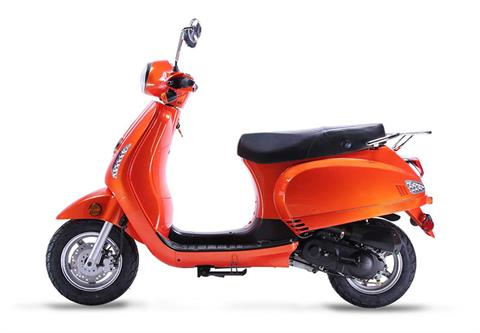 2019 Wolf Brand Scooters Wolf Lucky in Junction City, Kansas
