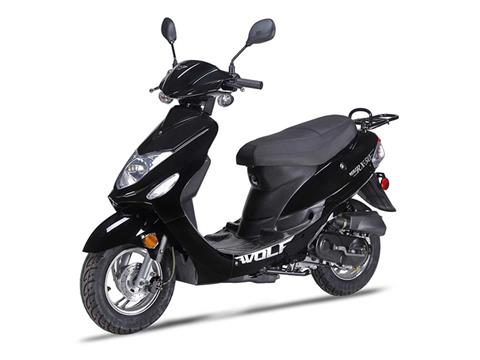 2019 Wolf Brand Scooters Wolf RX-50 in Virginia Beach, Virginia