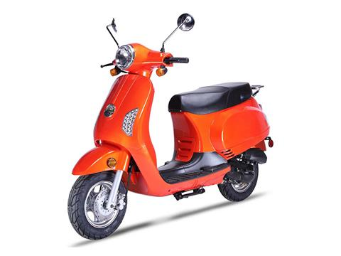 2020 Wolf Brand Scooters Wolf Lucky II in Coloma, Michigan