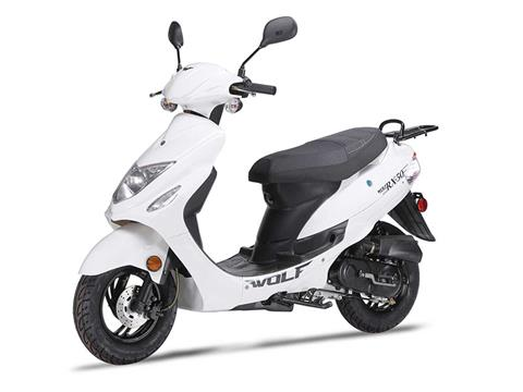 2020 Wolf Brand Scooters Wolf RX-50 in Coloma, Michigan