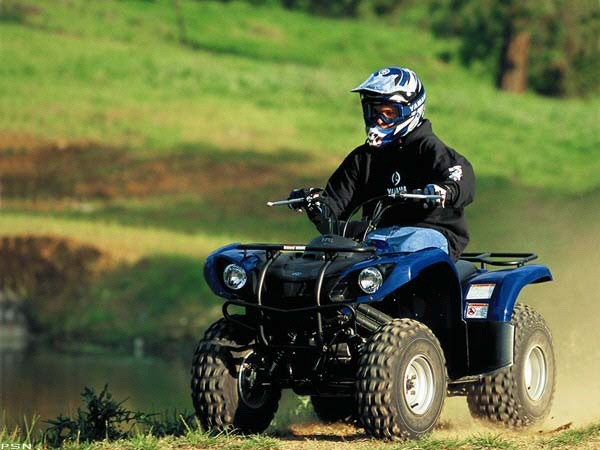 2007 Yamaha Grizzly 125 Automatic in Scottsbluff, Nebraska