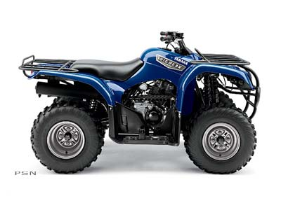2007 Big Bear 250