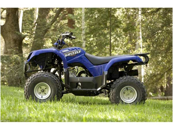 2008 Yamaha Grizzly 80 in Iowa City, Iowa - Photo 2