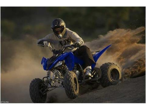 2008 Yamaha Raptor 250 in Olympia, Washington - Photo 6