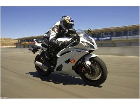 2010 Yamaha YZF-R6 in Monroe, Michigan - Photo 7