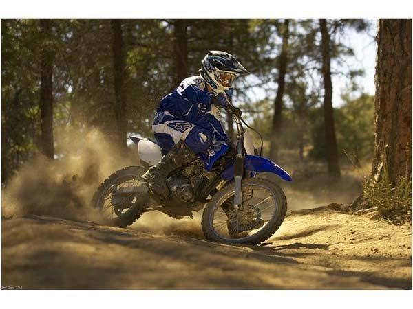 2011 Yamaha TT-R125LE 9
