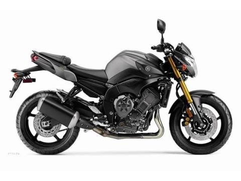 2012 Yamaha FZ8 in Manheim, Pennsylvania