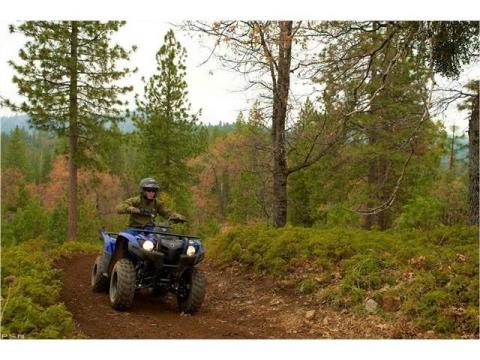 2013 Yamaha Grizzly 300 Automatic in Louisville, Tennessee - Photo 15