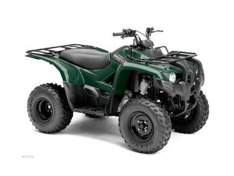 2013 Yamaha Grizzly 300 Automatic in Louisville, Tennessee - Photo 11