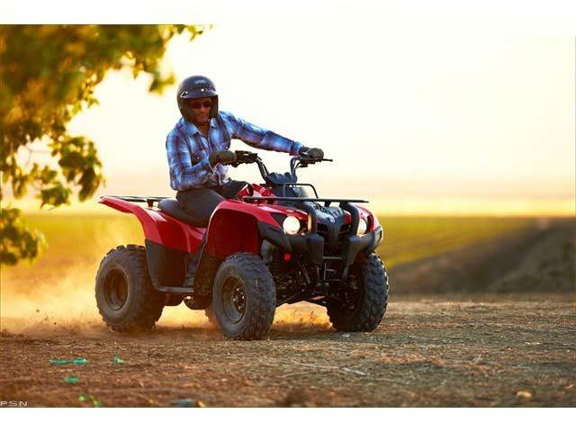 2013 Yamaha Grizzly 300 Automatic in Louisville, Tennessee - Photo 17