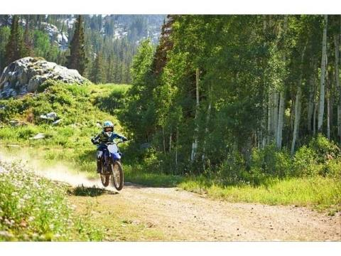 2014 Yamaha TT-R125LE in Philipsburg, Montana - Photo 10