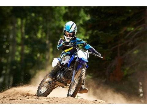 2014 Yamaha TT-R125LE in Philipsburg, Montana - Photo 12
