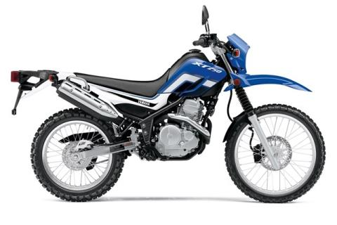 2015 Yamaha XT250 in Denver, Colorado