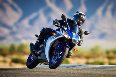 2015 Yamaha YZF-R3 in Woodinville, Washington - Photo 17