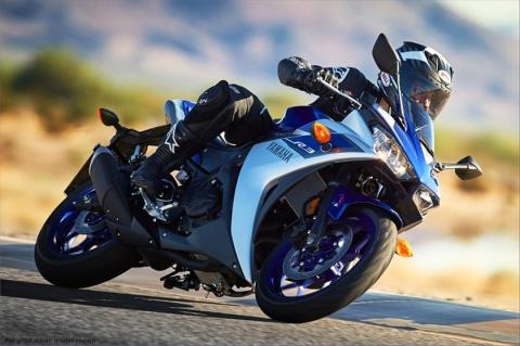 2015 Yamaha YZF-R3 in Denver, Colorado