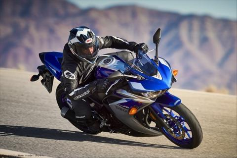 2015 Yamaha YZF-R3 in Sumter, South Carolina