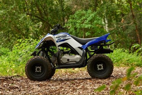 2016 Yamaha Raptor 90 in Simi Valley, California