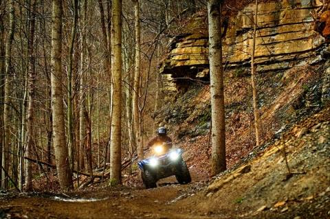 2016 Yamaha Grizzly EPS in Romney, West Virginia