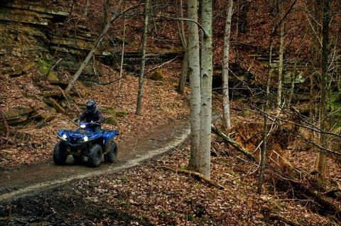 2016 Yamaha Grizzly EPS in Grimes, Iowa - Photo 21