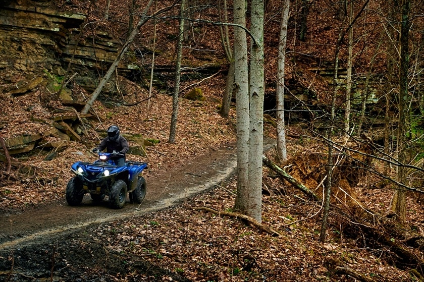 2016 Yamaha Grizzly EPS in Elyria, Ohio